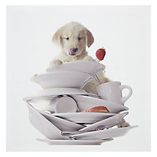Buy Woodmansterne Puppy Greeting Card Online at johnlewis.com