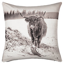 Buy John Lewis Highland Cow Cushion Online at johnlewis.com