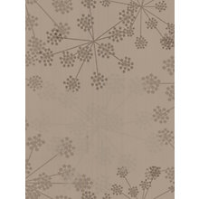 Buy Graham & Brown Wallpaper Online at johnlewis.com