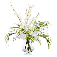 Buy Peony Phalaenopsis in Mirrored Planter, White Online at johnlewis.com