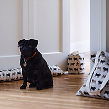 Buy Fenella Smith Pug Gift Range Online at johnlewis.com