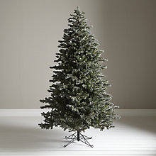 Buy John Lewis Whistler Blue Fir Christmas Tree, 7.5ft Online at johnlewis.com