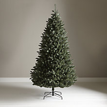 Buy John Lewis Jade Spruce Christmas Tree, 8ft Online at johnlewis.com