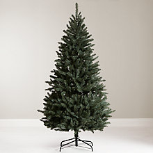 Buy John Lewis Jade Spruce Christmas Tree, 6ft Online at johnlewis.com