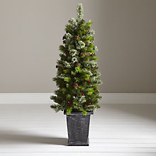Buy John Lewis Pre-Lit Balmoral Porch Tree, 4ft Online at johnlewis.com