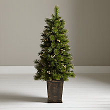Buy John Lewis Pre-Lit Gold Berry Porch Tree, 4ft Online at johnlewis.com