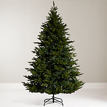 Buy John Lewis Kensington Fir Christmas Tree, 7ft Online at johnlewis.com