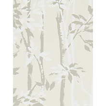 Buy Sanderson Beechgrove Wallpaper Online at johnlewis.com