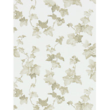 Buy Sanderson Hedera Wallpaper Online at johnlewis.com