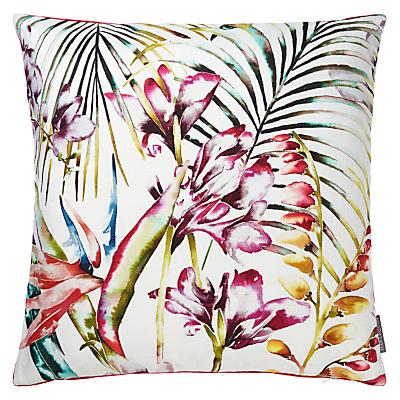 Harlequin Paradise Cushion, Flamingo