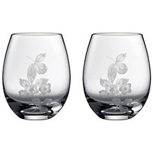 Buy Wedgwood Wild Strawberry Crystal Tumbler Glasses, Set of 2 Online at johnlewis.com