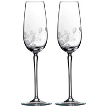Buy Wedgwood Wild Strawberry Crystal Champagne Flutes, Set of 2 Online at johnlewis.com