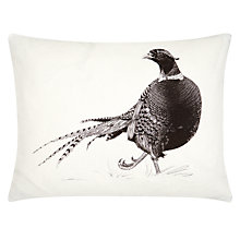 Buy Ben Rothery Pheasant Rectangular Cushion Online at johnlewis.com