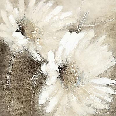Adelene Fletcher - Daisies, 58 x 58cm