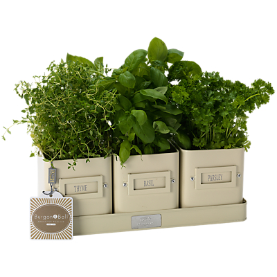 Burgon & Ball Cream Herb Pots