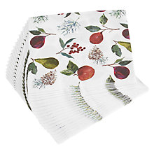 Buy John Lewis Winter Fruits Paper Napkins, Pack of 20 Online at johnlewis.com