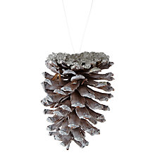 Buy John Lewis Snowdrift Wooden Frosted Pinecone Tree Decoration, Brown/White Online at johnlewis.com