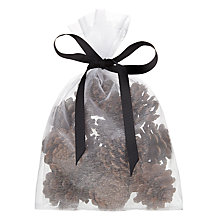 Buy John Lewis Natural Pinecones, Bag of 12 Online at johnlewis.com