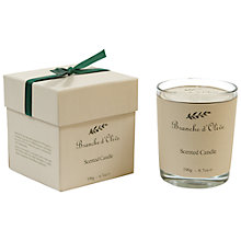 Buy Branche D'Olive Figue Verte Scented Candle Online at johnlewis.com
