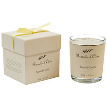 Buy Branche D'Olive Verveine Scented Candle Online at johnlewis.com