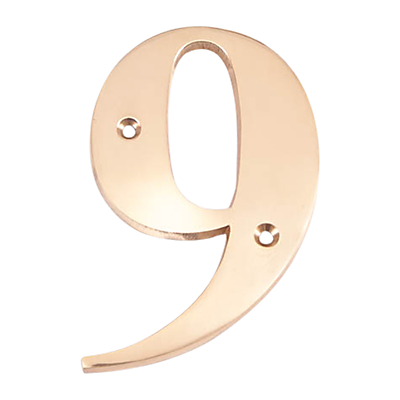 The House Nameplate Company 15cm Brass Numeral 9