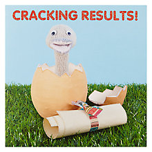 Buy Mint Ostrich Exam Congratulations Card Online at johnlewis.com