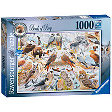 Buy Ravensburger Birds Of Prey Jigsaw Puzzle, 1000 Pieces Online at johnlewis.com