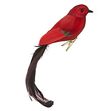 Buy John Lewis Midwinter Feather Clip On Bird, Red and Purple Online at johnlewis.com