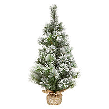Buy John Lewis Snowdrift Frosted Pine Burlap Tree, 60cm Online at johnlewis.com