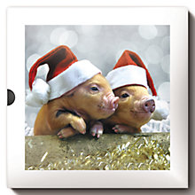 Buy Darkroom Christmas Outdoors Piglet Cards, Box of 16 Online at johnlewis.com
