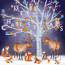 Buy John Lewis Enchantment Tree Advent Cards Online at johnlewis.com