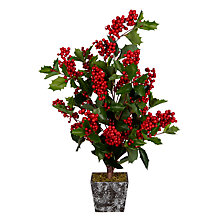 Buy John Lewis Midwinter Red Berry & Holly Bush Tree Online at johnlewis.com
