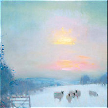 Buy Woodmansterne Faithful Flock Charity Christmas Cards, Pack of 5 Online at johnlewis.com
