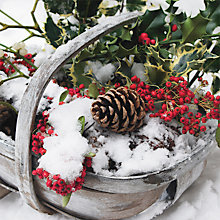 Buy Paper House Winter Basket Cards, Pack of 6 Online at johnlewis.com