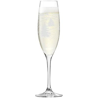 LSA International Tirol Champagne Flutes, Assorted, Set of 4