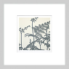 Buy Gillian McCadden - Bracken Fronds II, 48 x 48cm Online at johnlewis.com
