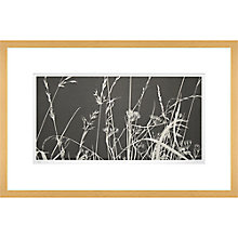 Buy Gillian McCadden - Meadow Lines, 58.5 x 90cm Online at johnlewis.com
