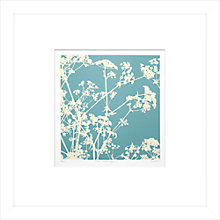 Buy Gillian McCadden - Cow Parsley I, 48 x 48cm Online at johnlewis.com