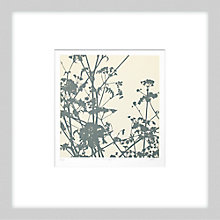 Buy Gillian McCadden - Cow Parsley II, 48 x 48cm Online at johnlewis.com