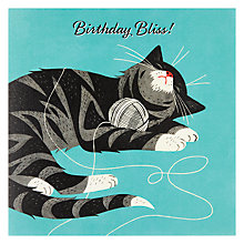 Buy Pigment Cat Bliss Birthday Card Online at johnlewis.com