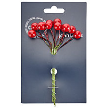 Buy John Lewis Berry Pick, Pack of 12, Red Online at johnlewis.com