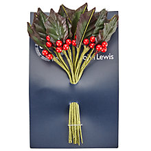Buy John Lewis Plastic Holly Pick Decoration Online at johnlewis.com