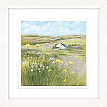 Buy Diane Demirci - Buttercup Meadow I, Framed Giclee Print, 57 x 57cm Online at johnlewis.com
