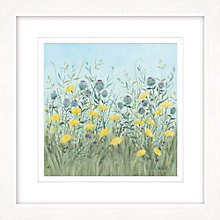 Buy Diane Demirci - Dandelion & Burdoch Framed Limited Edition Giclee Print, 57 x 57cm Online at johnlewis.com