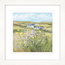 Buy Diane Demirci - Buttercup Meadow II Framed Giclee Print, 57 x 57cm Online at johnlewis.com