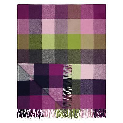 Avoca Pioneer Wool Throw, Purple