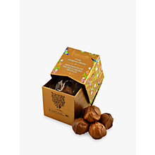 Buy Holdsworth's Gold Mini Cube Salted Caramel Truffles Online at johnlewis.com