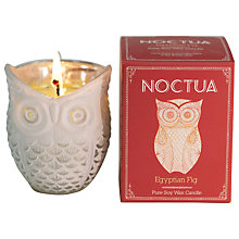 Buy Noctua Egyptian Fig Scented Candle Online at johnlewis.com
