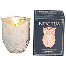 Buy Noctua French Hyacinth Scented Candle Online at johnlewis.com