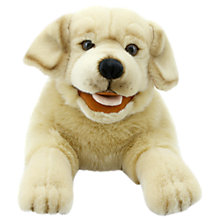 Buy Puppet Company Playful Puppies Hand Puppet, Labrador Online at johnlewis.com